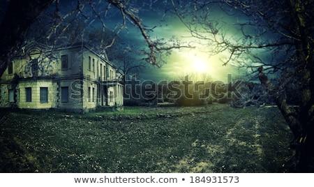 casa · escuro · cruz · noite · estátua - foto stock © forgiss