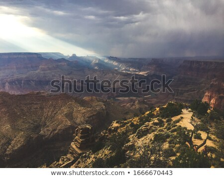 Arizona · deserto · Colorado · rio · EUA · laranja - foto stock © pbodig