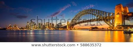 Liman köprü ufuk çizgisi Sidney Avustralya gece Stok fotoğraf © travelphotography