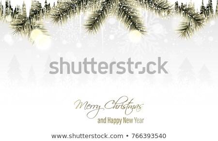 Рождества · дизайна · стекла · зима · цвета - Сток-фото © g215