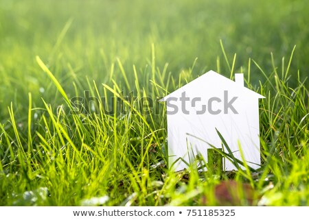 White paper house and spring green grass with green bokeh  Stock photo © nuiiko