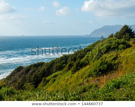 Rugged Rocky Beach on the Oregon Coast Overlook at Sundown Stock photo © Frankljr