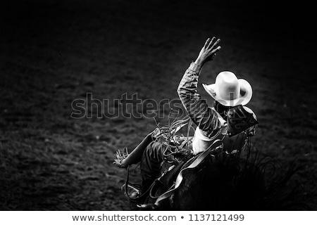 Rodeó cowboy naplemente ló farm állat Stock fotó © adrenalina
