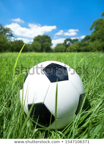 Sport equipment and balls, natural colorful tone stock photo © JanPietruszka