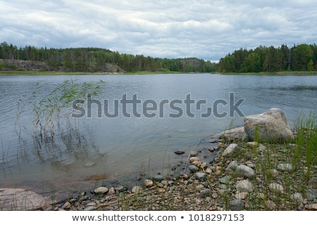 Lake shore with rocks and green grass Stock photo © Sportactive