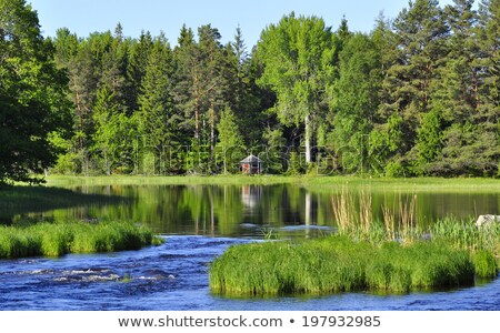 Swedish natural area  Stock photo © master1305