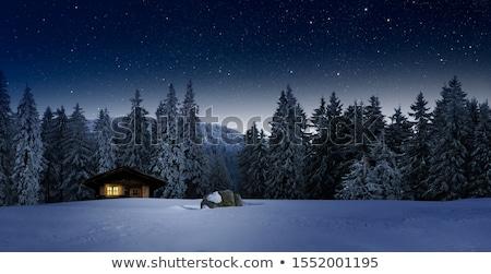 Night landscape in mountain village Stock photo © Kotenko