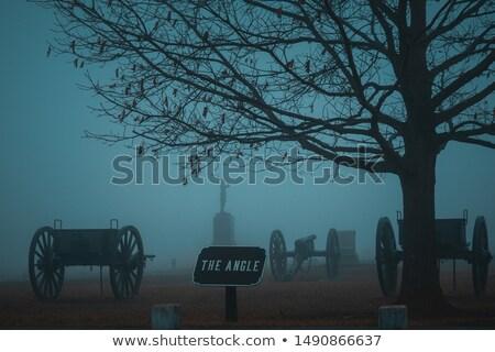 поле боя солдата ходьбе дымчатый градиент Сток-фото © Tawng