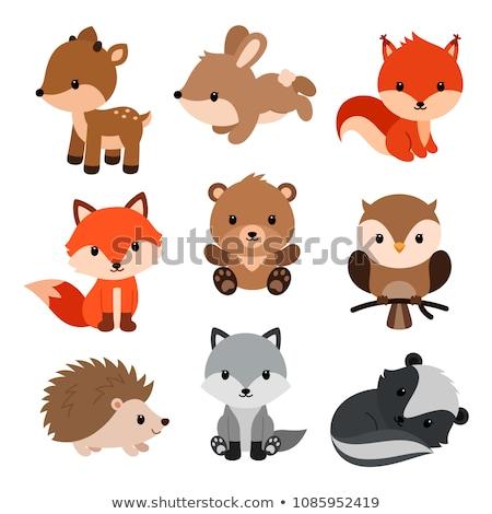 cute squirrel cartoon sitting on the wood Stock photo © jawa123