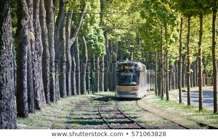 tram of brussels tramway network stock photo © artjazz
