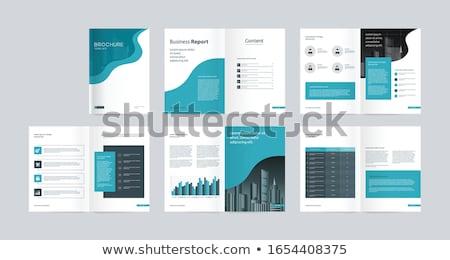 современных бизнеса ежегодный докладе Flyer брошюра Сток-фото © SArts