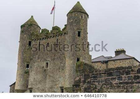 遺跡 · 城 · 北方 · アイルランド · 建物 · アーキテクチャ - ストックフォト © phbcz