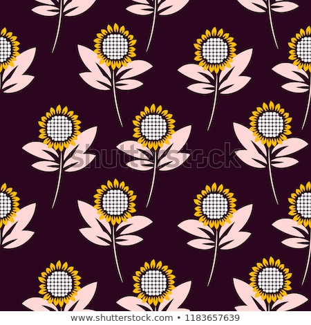 Colorful Sunflower Seed Abstract Background Stock fotó © YoPixArt