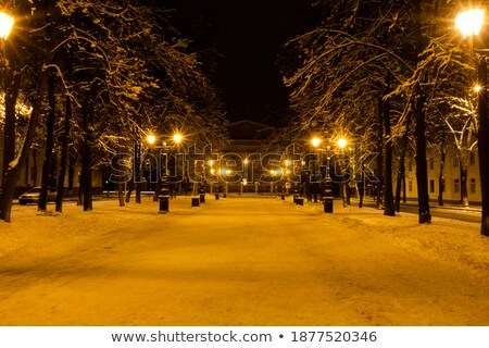 pillar light and snow falls night city Stock photo © romvo