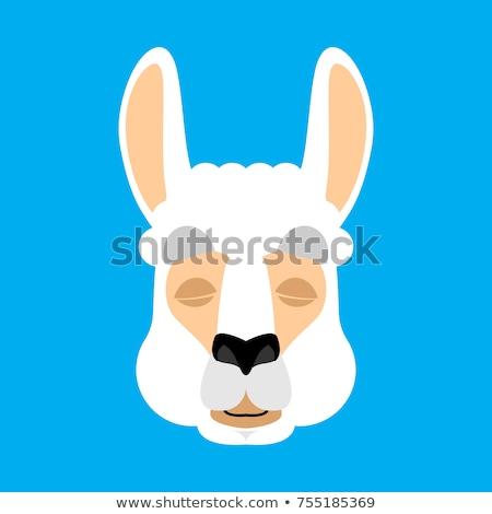 lama alpaca sleeping animal asleep emoji vector illustration stock photo © popaukropa