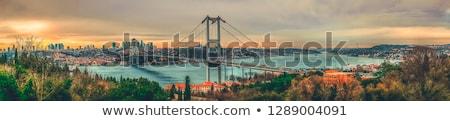 Gyönyörű panorámakép kilátás város Isztambul kék ég Stock fotó © artjazz