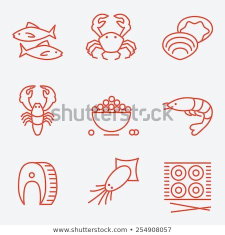 shrimp icon in flat style fresh sea food stock photo © marysan