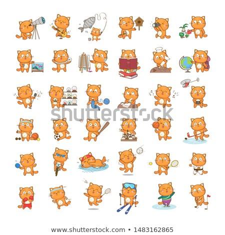 Cartoon gato tenis ilustración jugando pelota Foto stock © cthoman