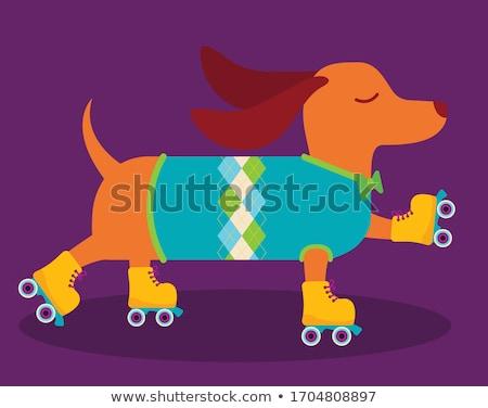 Cartoon chien derby illustration Photo stock © bennerdesign
