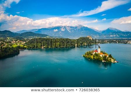 tó · sziget · Szlovénia · víz · erdő · tájkép - stock fotó © cookelma