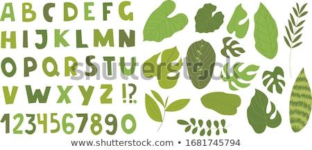 educational alphabet letters set color book Stock photo © izakowski