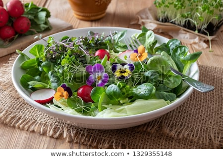 Salad with edible pansies and fresh broccoli and kale microgreens Stock photo © madeleine_steinbach