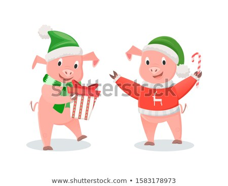 Pig in Hat and Knitted Sweater with Cane Candy Stock fotó © robuart