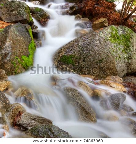 piedra · cubierto · musgo · agua · paisaje · fondo - foto stock © bobkeenan
