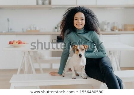 Feliz ama de casa afro banco perro Foto stock © vkstudio