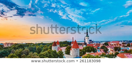 Panoramisch Tallinn Estland heuvel hemel Stockfoto © borisb17