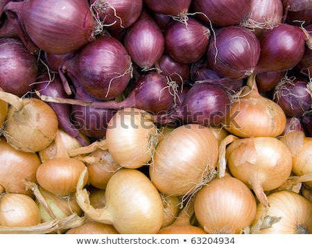 Yellow and red onion pile Stock photo © bobkeenan