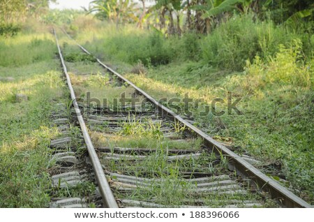 railroad tracks to nowhere Stock photo © bobkeenan