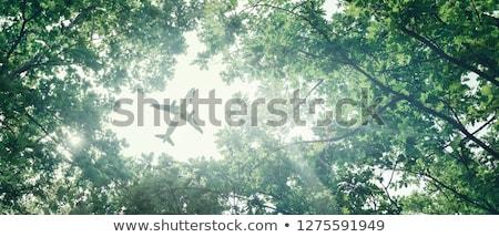 Ecológico transporte ar papel aeronave voador Foto stock © silent47