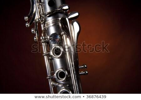 Clarinet Isolated Gold Spotlight Stock fotó © mkm3