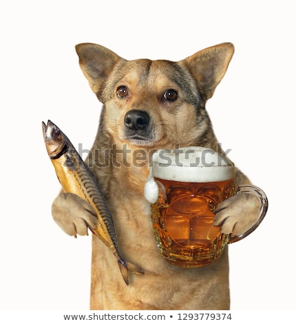 Smoked fish and cup of beer on a white background Stock photo © inxti