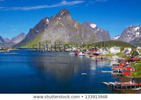 ノルウェーの 海岸線 海岸 フェリー 晴れた 夏 ストックフォト © Harlekino