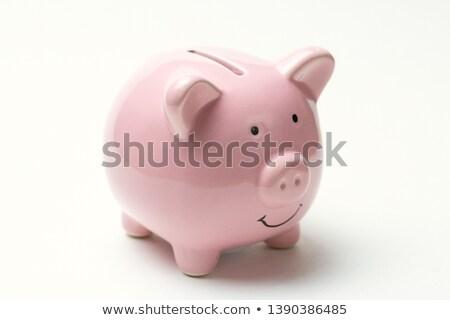 piggy coin bank stock photo © stevanovicigor