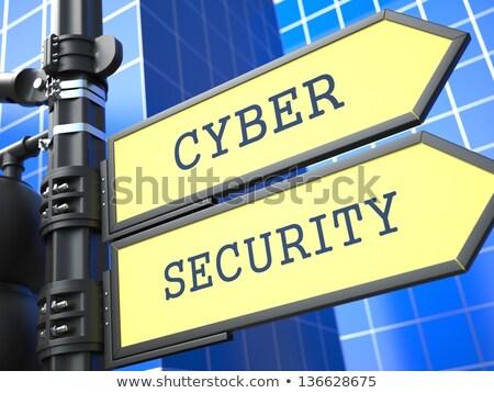 Business Concept. Cyber Security Roadsign. Stock photo © tashatuvango