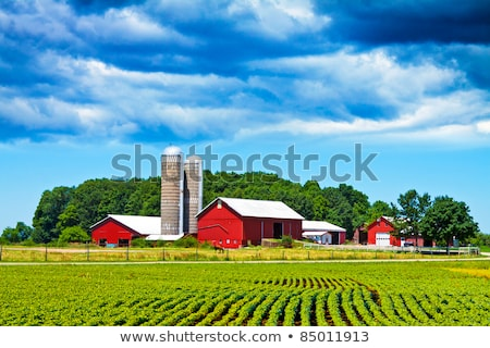 Foto d'archivio: Farm · casa · campo · bella · panorama · tramonto