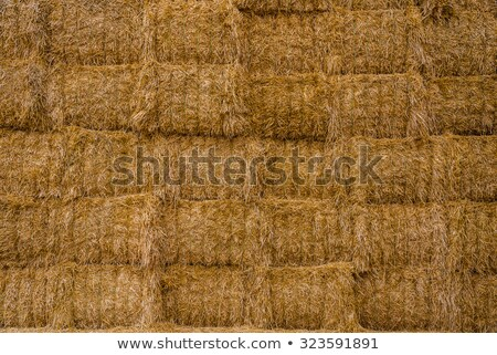 Hay Wall Stack Stock photo © rghenry