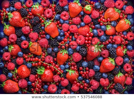 Baies bois fraise sweet BlackBerry Berry Photo stock © artcreator