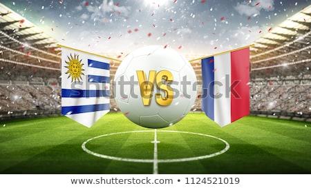 Soccer ball with Uruguay flag on pitch Stock photo © stevanovicigor