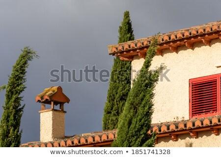 naïef · verf · weinig · huis · heuvel · bloem - stockfoto © meinzahn