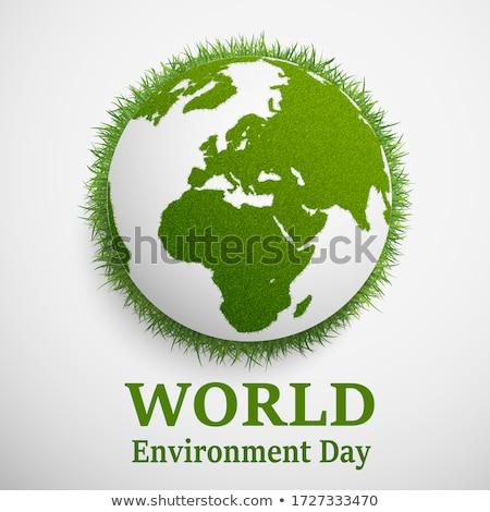 Earth, green grass and trees Stock photo © cherezoff