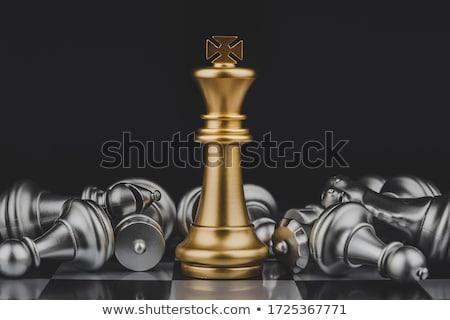 Rey del ajedrez pieza tablero de ajedrez piezas metal campo Foto stock © idesign