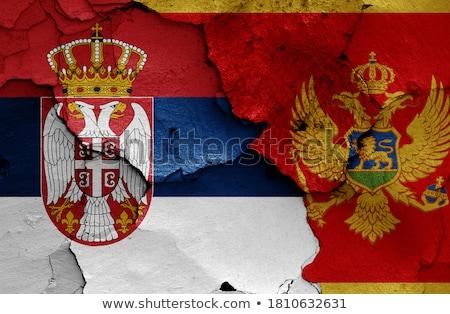флаг · Черногория · 3d · иллюстрации · путешествия - Сток-фото © creisinger