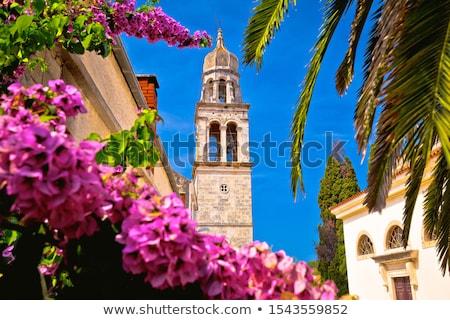 Дубровник Церкви Европа города собора подробность Сток-фото © LianeM