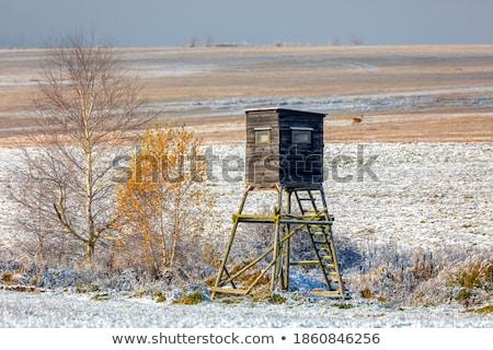 Winter Scenery With Hunters Tower Zdjęcia stock © Artush