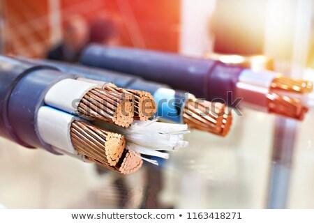 Rame elettrici potere cavo isolato Foto d'archivio © nemalo