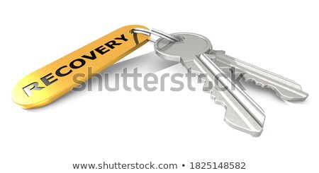keys with word data on golden label stock photo © tashatuvango